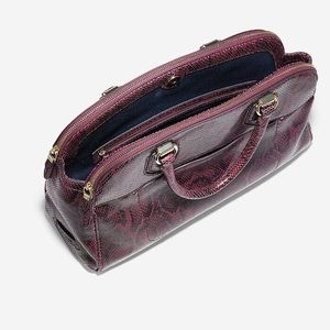 Cole Haan tawny port snake print purse